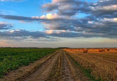 Dare valore ai prodotti agricoli: sabato 21 un incontro a Solarolo