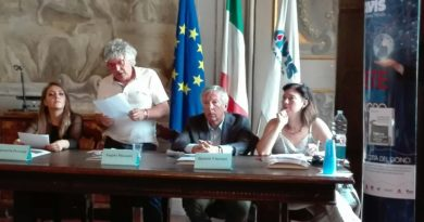 Avis Faenza - Presentazione progetto rete lavoro 01
