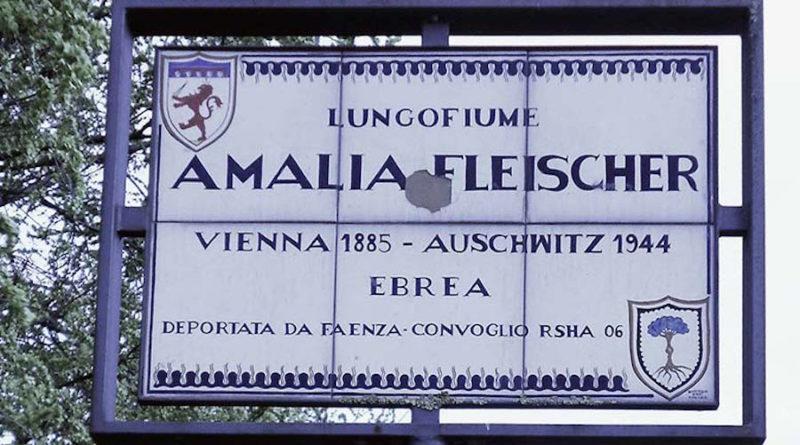 8.Faenza_Fleischer-ridotta