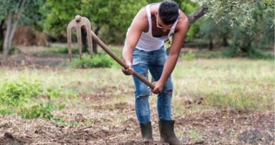 agricoltura giovani