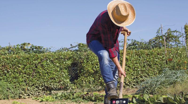 ImageLine agricoltura
