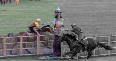 vincolo cavalieri palio
