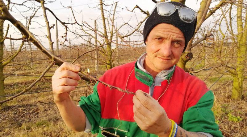 Romano Gaddoni agricoltura