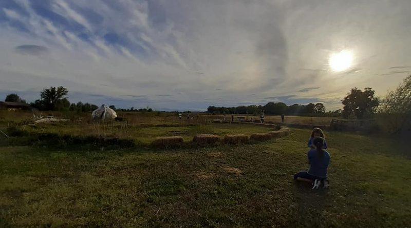 Campo di HumuSapiens